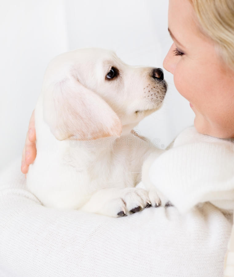 Download Close Up Of Woman Embracing Puppy Royalty Free Stock Images - Image: 28593359