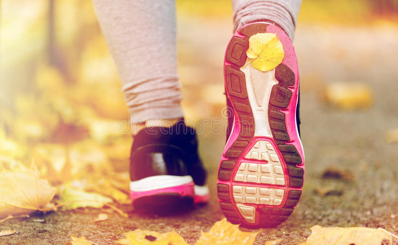 Close up of woman feet wearing sneakers in autumn royalty free stock images