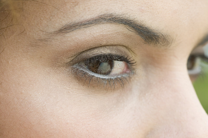 Download Close up of a woman's eyes stock photo. Image of girl - 6334862
