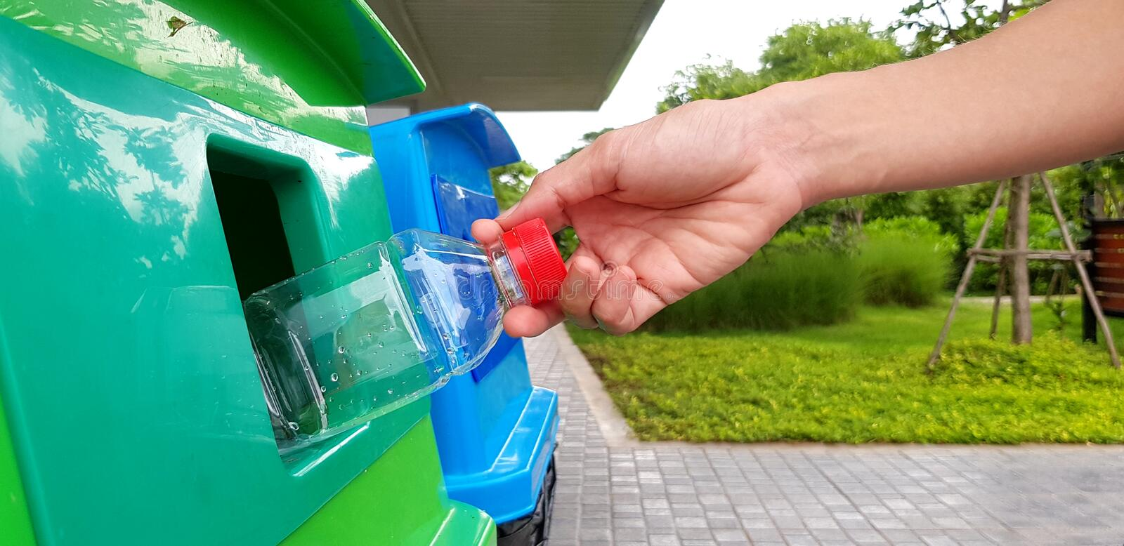 Close up woman`s hand holding and dumping plastic bottle of water into green recycle bin, trashcan or trash. With street and green garden background - Cleaning royalty free stock photo