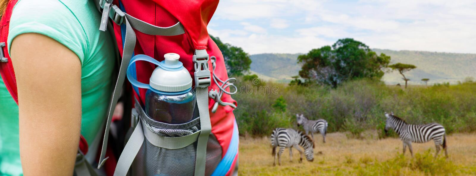 Close up of woman with water bottle in backpack. Travel, tourism, hike and people concept - close up of woman with water bottle in backpack pocket over zebras in royalty free stock photos