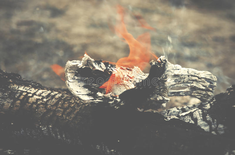 Close up of the wood burns on fire. Beautiful fire with flames c. Harred wood stock photography