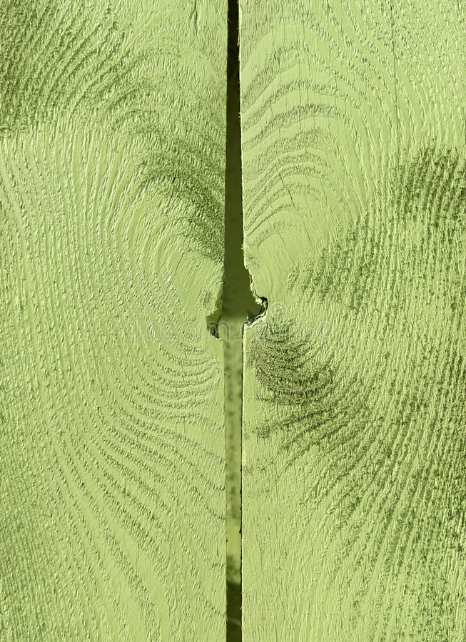 Close up of wood texture painted green stock photos