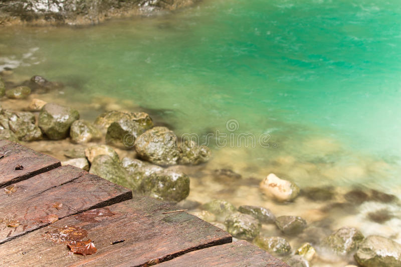 Close up of wooden pathway with dead leaves and green crystal clear water stock images