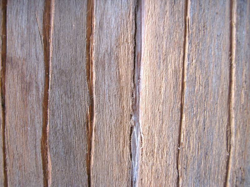 Wood texture. A close-up of a wooden plank with vertical cracks stock images