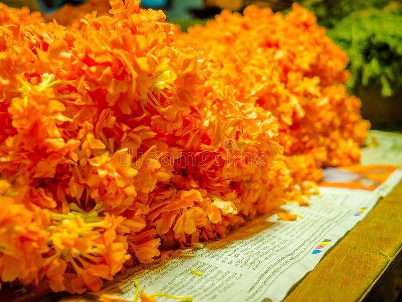 Close up of a yellow flowers at KR Market in Bangalore. in Bangalore, India.  royalty free stock photography