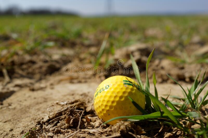 Yellow Golf ball lost in the fields stock photo