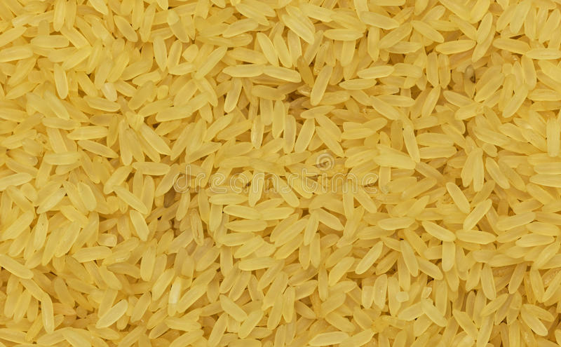 Download Close Up Of Yellow Rice. Stock Photo - Image: 83710247