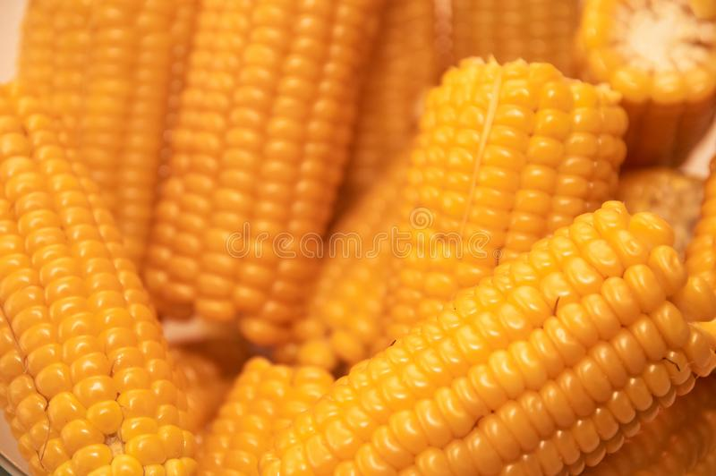 Close up yellow sweet corn grain, dense rows of boiled yellow corn seeds for background. Macro stock photo