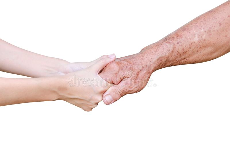Young asian girl hand holding elderly man , care and support in family concept isolated on white background with clipping path royalty free stock photo