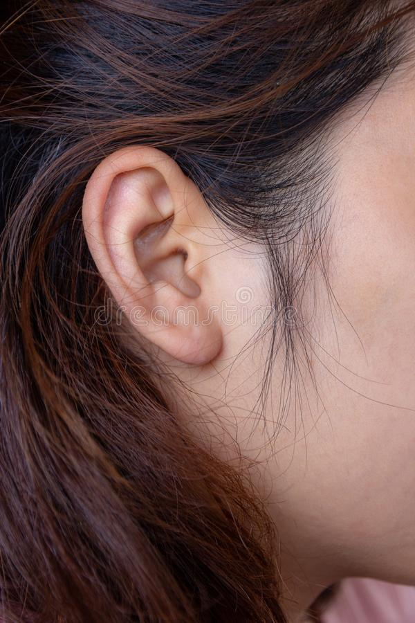 Close up young female ear and hair, health concept stock photos