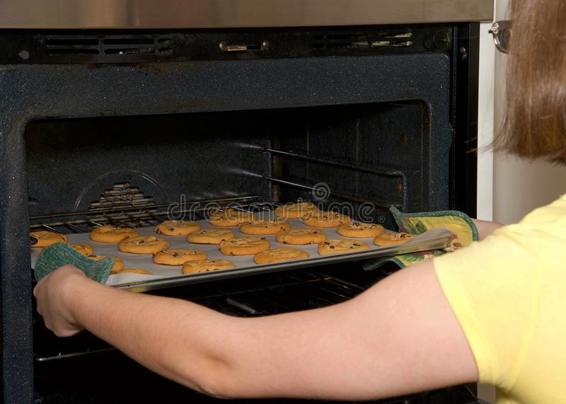 Young woman pulling chocolate chip cookies out of the oven royalty free stock photos