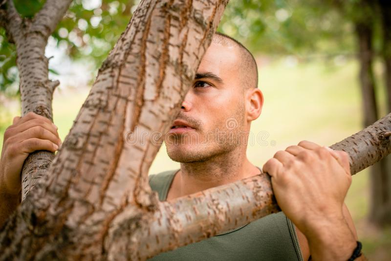 Close up of man doing pull ups on tree. Close up of young man doing pull ups on tree, determination in his eyes stock photography