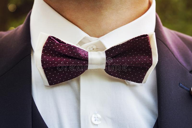 Close-up of a young man wearing a tuxedo with a bow tie. A male suit with a handsome bow tie for formal festive wear. Groom's sui stock photos