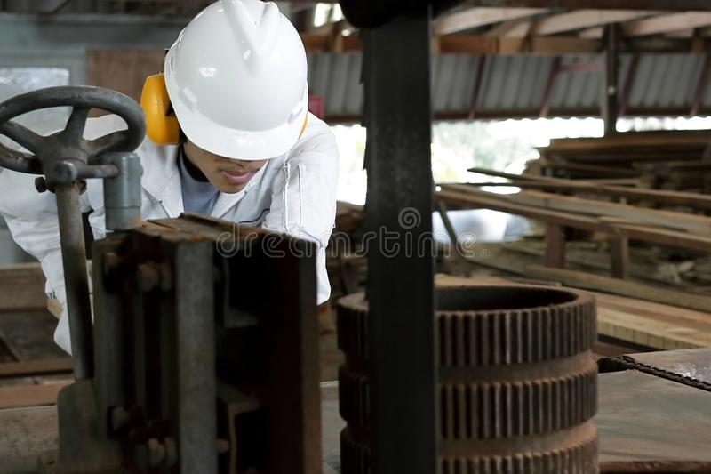 Close up young worker in uniform with safety equipment cutting a piece of wood on vertical band saw machine in carpentry factory. Close up young worker in stock image