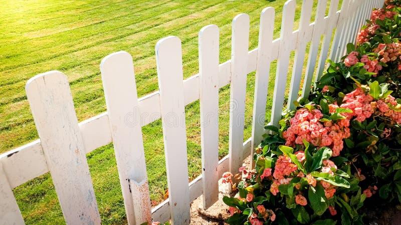 Close-upbeeld van mooi bloembed, groen gazon en witte houten omheining bij tuin royalty-vrije stock afbeelding