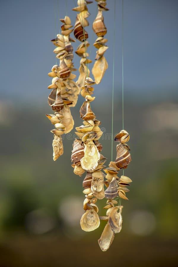 Close-upfotografie van hangende mobiel shells royalty-vrije stock foto's