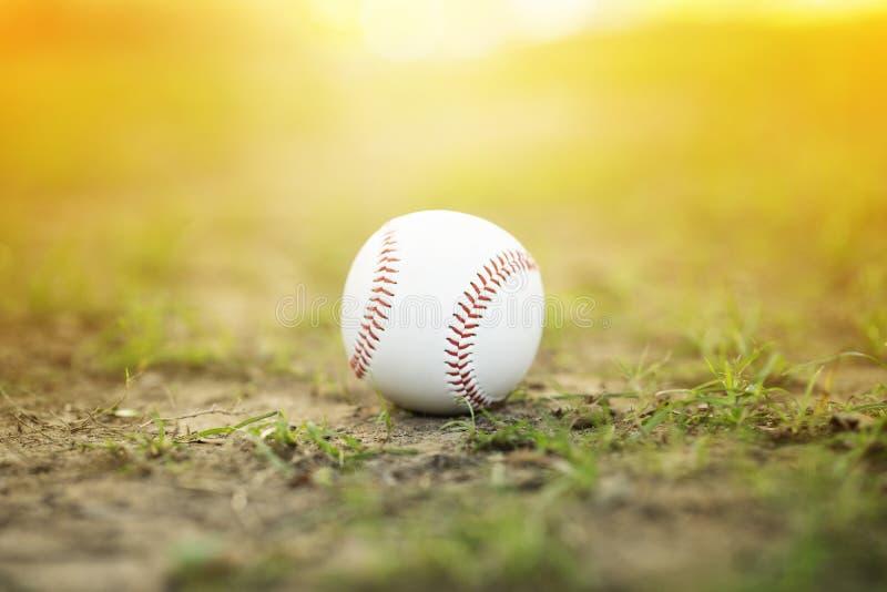 Close-uphonkbal op infield stock afbeelding
