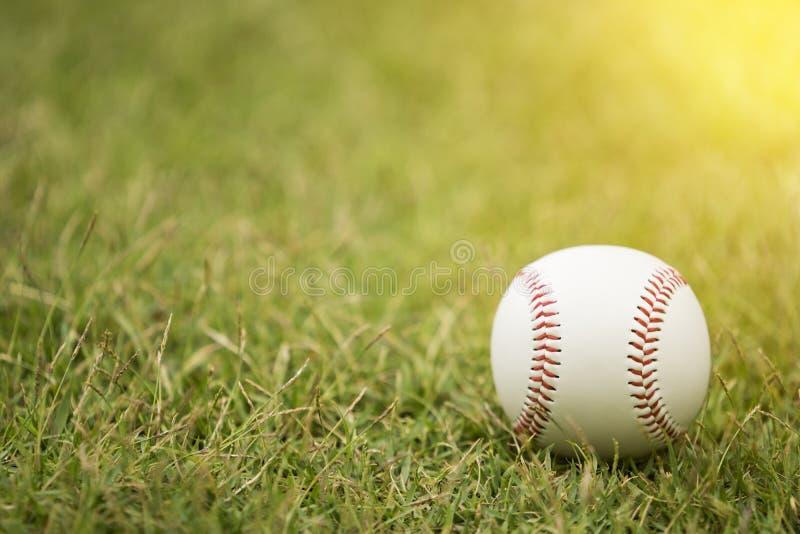 Close-uphonkbal op infield stock foto