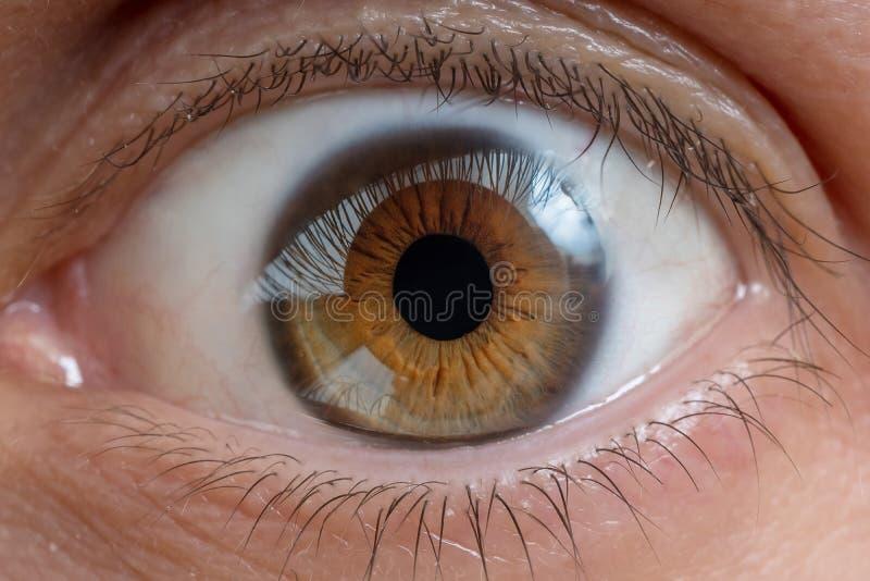 Close-upmening over man oog stock foto