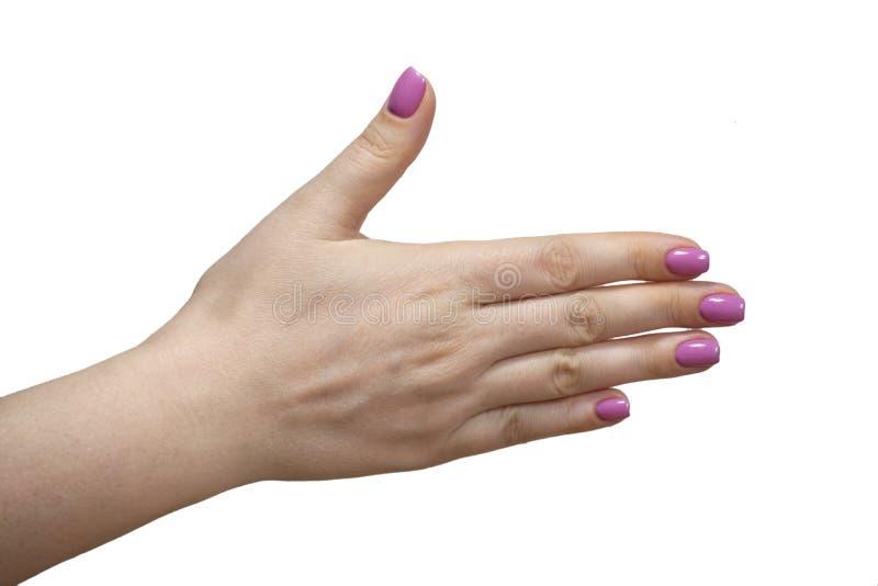 Close-upmening van handen met manicure van jong vrouw Geïsoleerd beeld stock foto