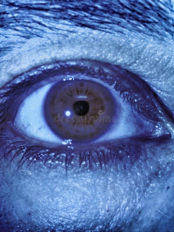 Close-upmening van oog en brow royalty-vrije stock fotografie