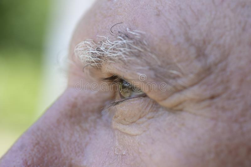 Close-upoog van de Kaukasische oude mens Portret van de oude mens in openlucht De Kaukasische mannelijke gezichtsachtergrond, slu royalty-vrije stock fotografie