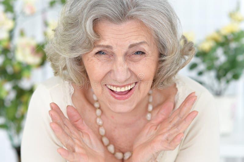 Close-upportret van gelukkig hoger vrouwenportret royalty-vrije stock foto