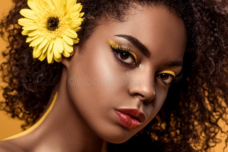 Close-upportret van jonge sensuele Afrikaanse Amerikaanse vrouw met artistieke samenstelling en gerbera in haar royalty-vrije stock fotografie