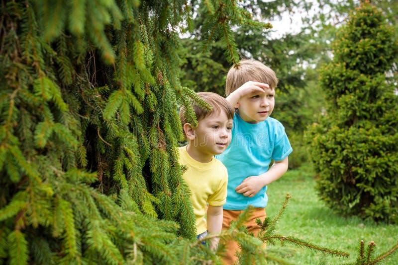 Close-upportret van Kaukasische twee kleine broersjongens die buiten in park op de zomerdag lachen royalty-vrije stock foto