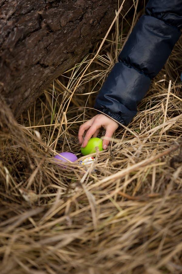 Close-upschot die van meisjeshand paasei van het nest nemen royalty-vrije stock afbeeldingen
