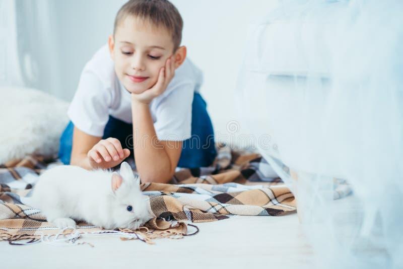 Close-upschot van het leuke kleine pluizige konijn bij de vage achtergrond van de kleine blonde jongen die op de plaid liggen stock afbeeldingen