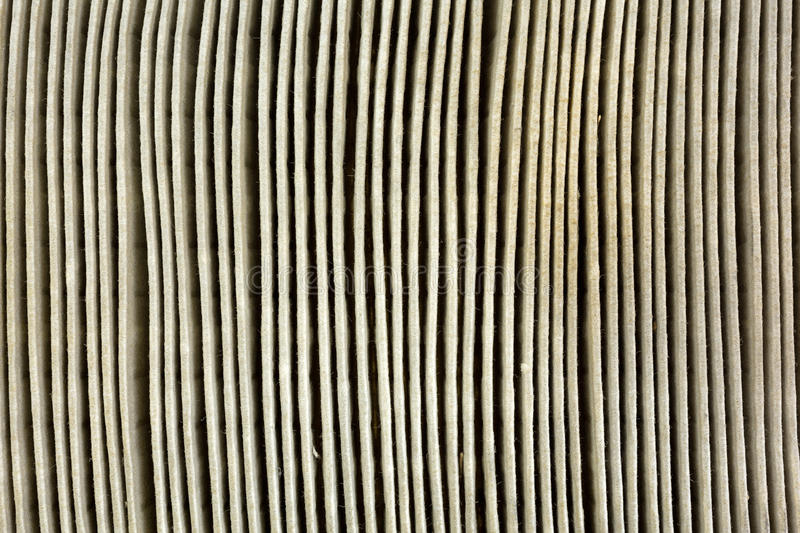 Download Close View Of A Dirty Automobile Air Filter Stock Photo - Image: 37119628