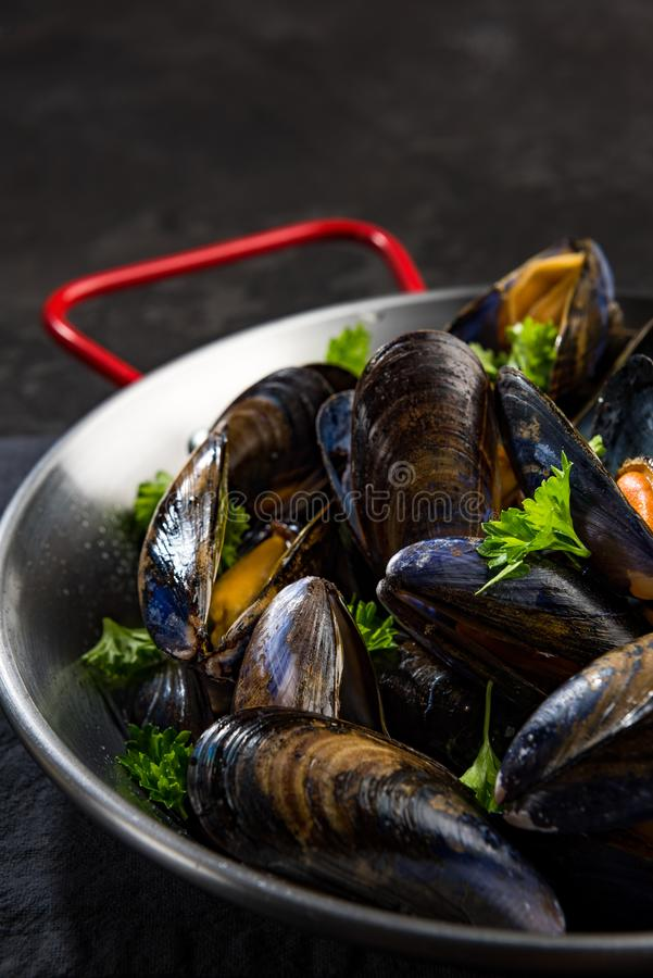 Close View on Mussels in Saucepan, Seafood Healthy Dish royalty free stock images