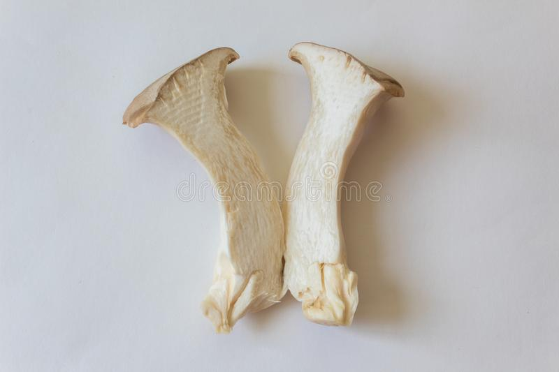 Close view of Pleurotus eryngii King Trumpet Mushroom revealing inner texture stock photos