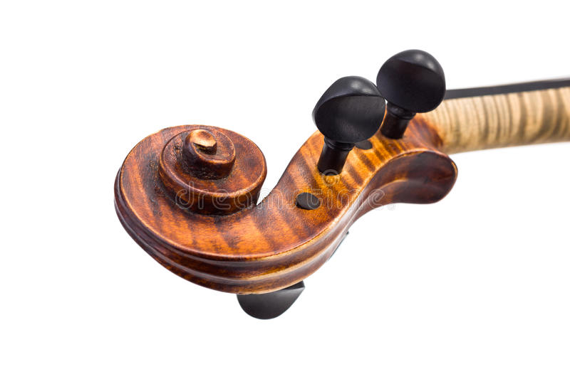 Close view of violin pegs and scroll royalty free stock image