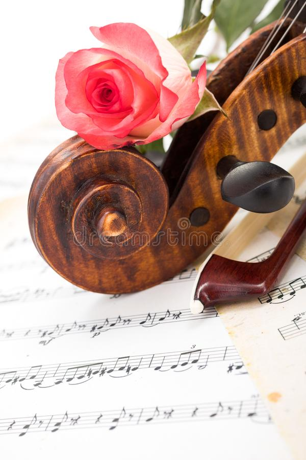 Close view of violin scroll, bow and red rose stock image