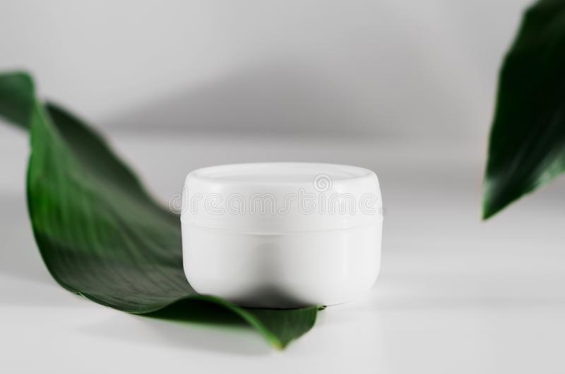 Closed cream jar and plant leaves side view. Organic cosmetology, natural cosmetics botanical concept. Women skin care product. Facial, body balm plastic stock photography
