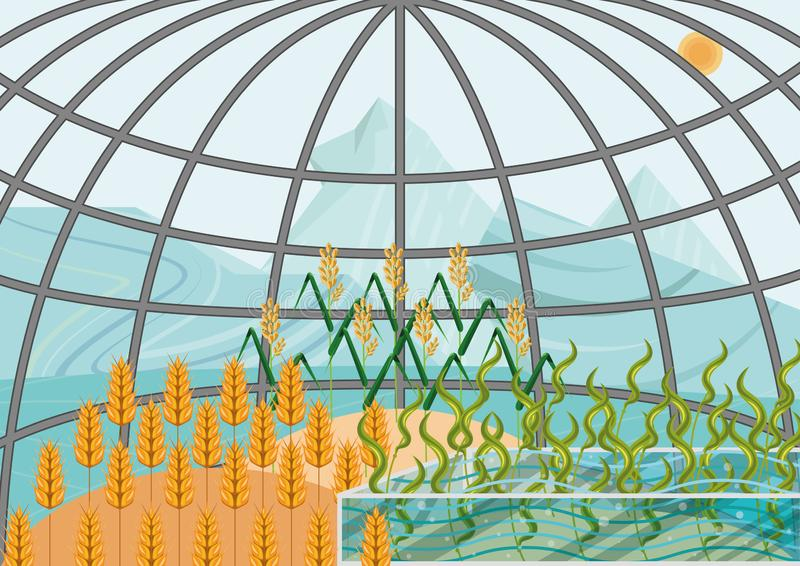 Closed ecological system. Concept of use. A self-sustainable bio station with plants: wheat, rice, algae in extreme weather conditions of arctic and antarctic stock illustration
