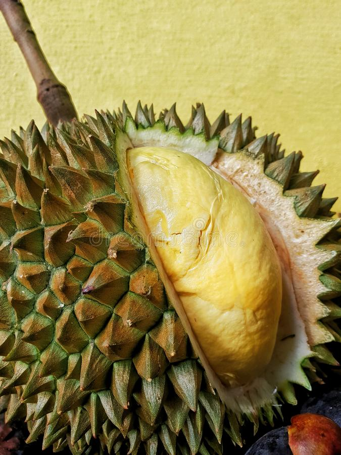 Closed up internal and external of durian stock photo