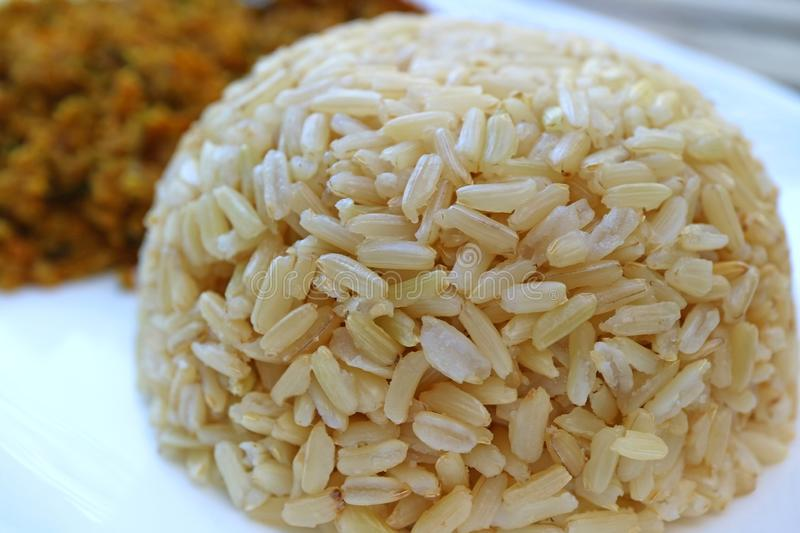Closed Up Steamed Thai Brown Jasmine Rice Served on White Plate royalty free stock image