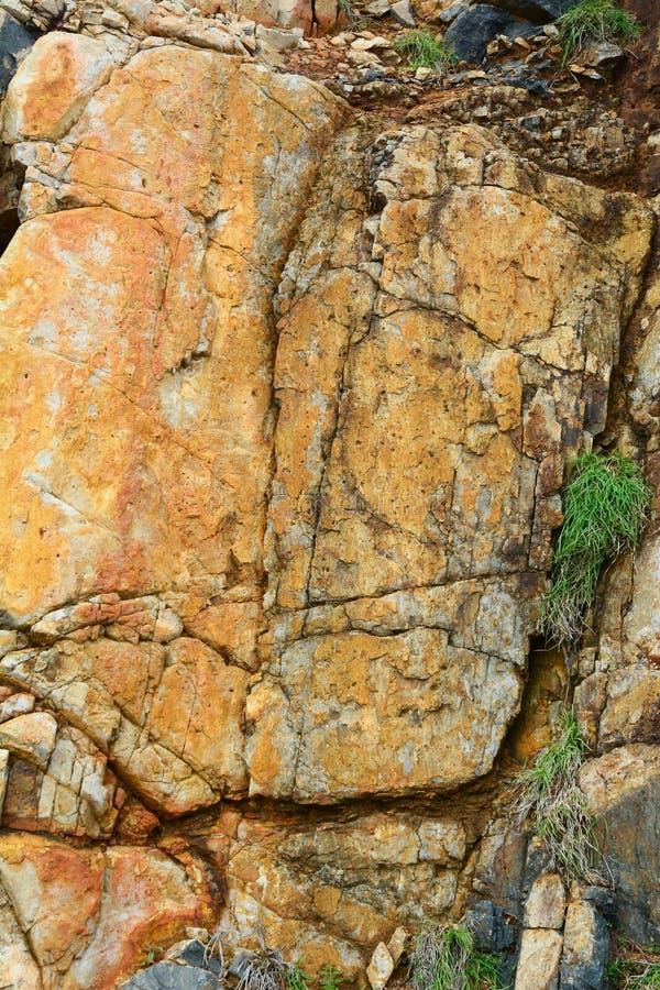 Closed up, stone in Con Dao island, Vietnam stock image