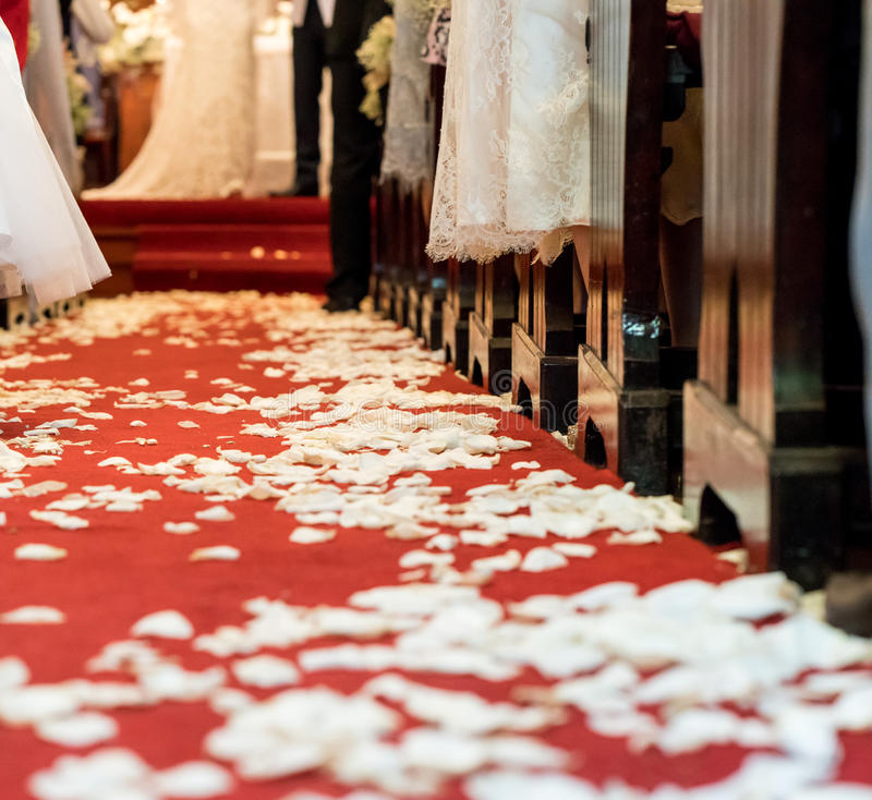 Closed Up White Flower Petals On Red Carpet Floor In Church At Christian Wedding Ceremony Beginning Of Life With Flower Petals Concept
