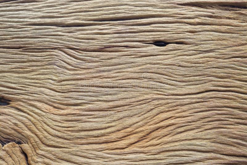 Closed up wood texture. stock photography