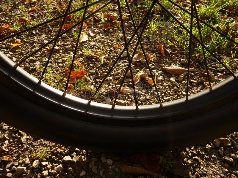 Closer bicycle tyre in black from beach cruiser. In autumn light stock photo