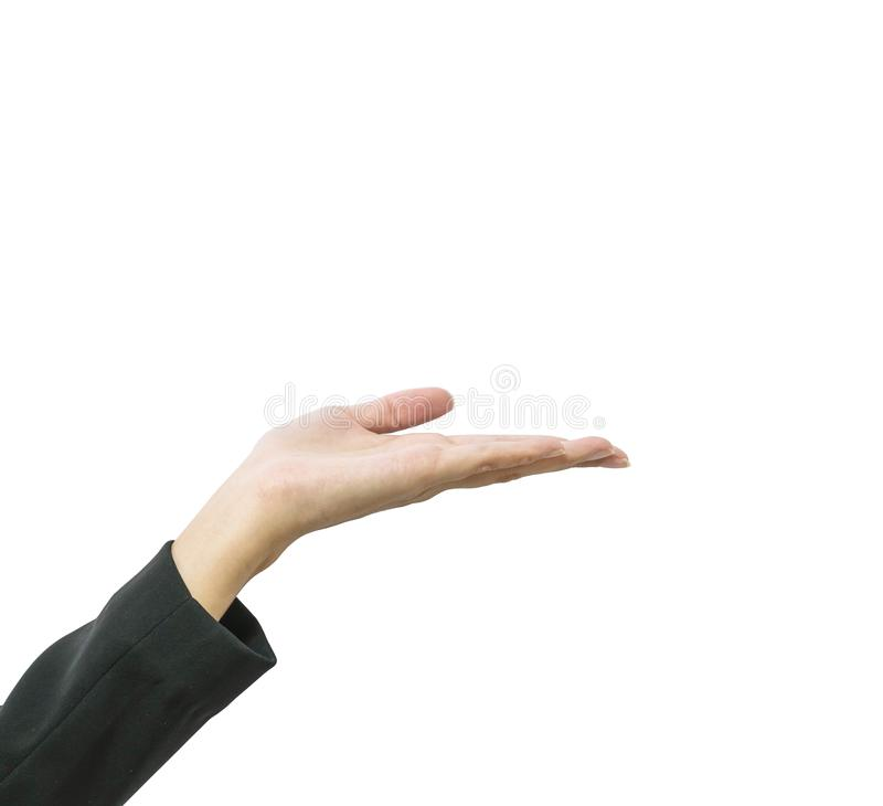 Closeup action of working woman hold out hand isolated on white background with clipping path royalty free stock photos