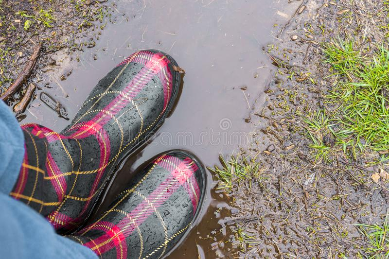 Closeup of adult rubber boots standing on mud puddle in the rain royalty free stock photo