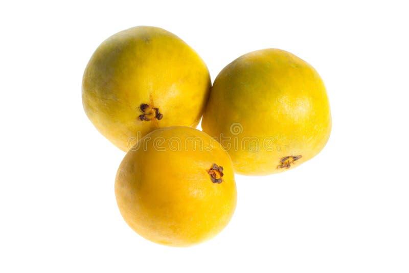Closeup of araza fruit from the Amazon area. Closeup of rare araza fruit from the Amazon area isolated on white stock image