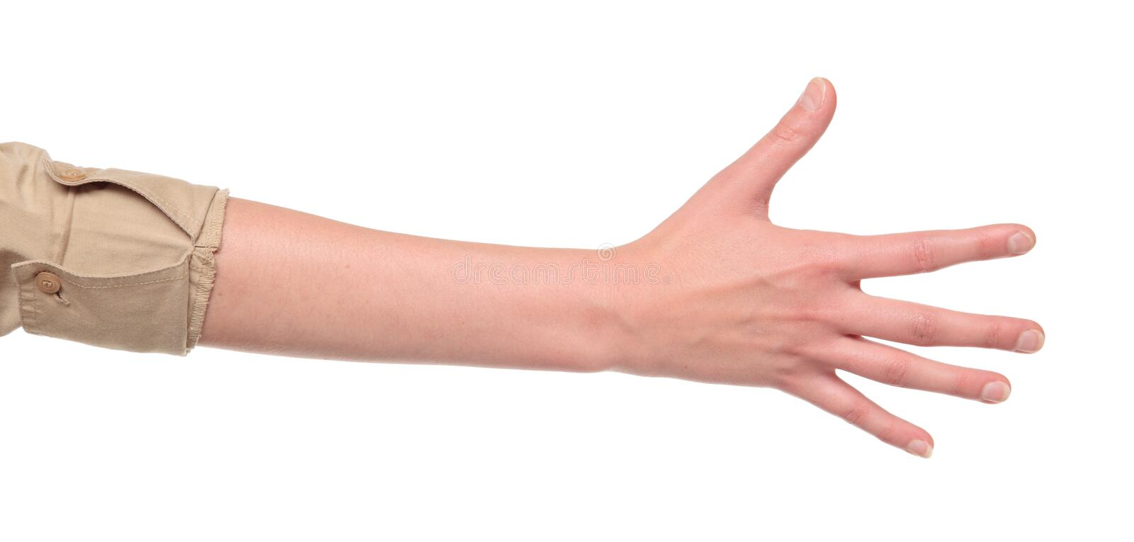 Closeup of arm - hand making number five sign. Closeup isolated studio shot of the rear view of a womans outstretched hand in a number five sign stock photo