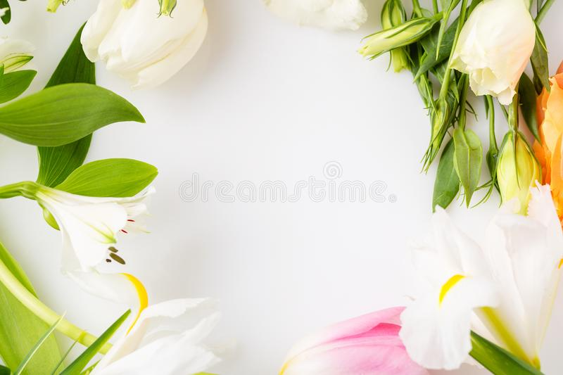 Closeup assorted spring flower border on white background with c. Opy space. Mother`s Day and spring background Mock up stock photography